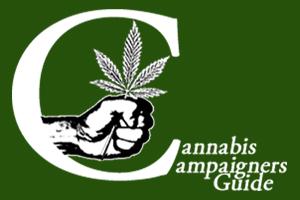CCGUIDE Logo